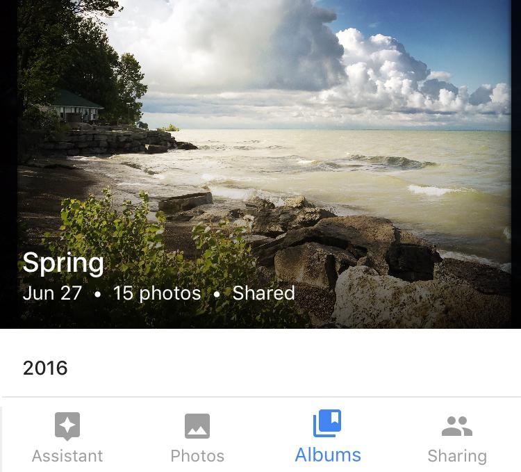 google photos, albums, shared